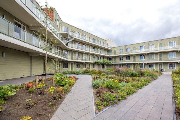 Vogelplein Dordrecht